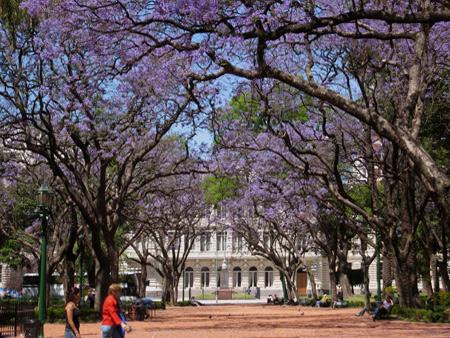 Plaza Rodríguez Peña, Buenos Aires