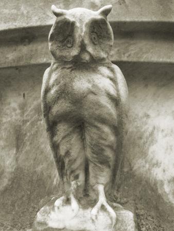 Owl, Recoleta Cemetery