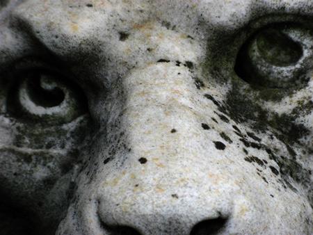 Berisso, Recoleta Cemetery